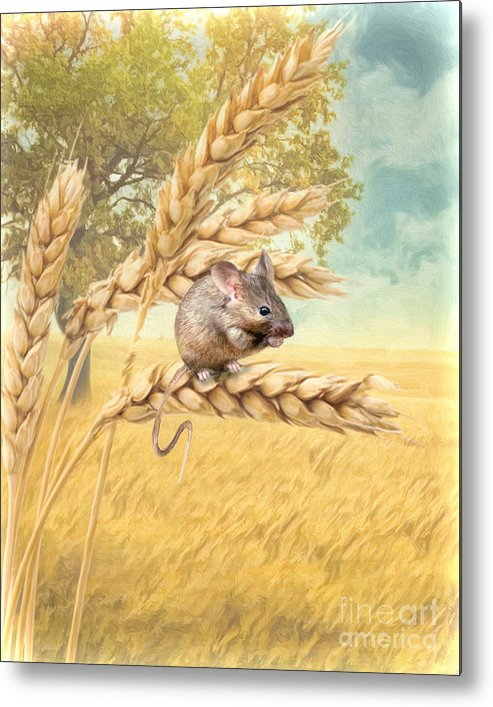 Mouse Metal Print featuring the digital art Field Mouse by Trudi Simmonds