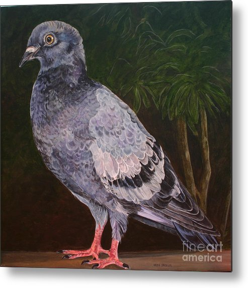 Pigeon Metal Print featuring the painting Central Park Visitor - Pigeon by Helen Shideler