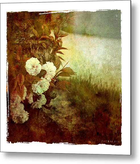 Flowers Metal Print featuring the photograph I Still Love You by Inesa Kayuta