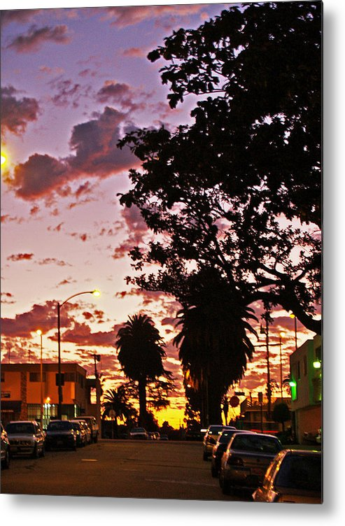 Libra.love.freedom Metal Print featuring the photograph Neighborhood Silhouette by D Wash