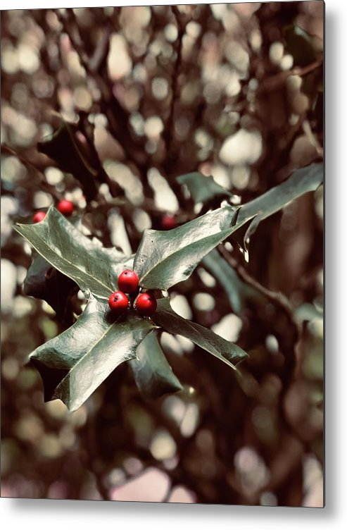 Holly Berry Metal Print featuring the digital art Red 3 by Sharon Green