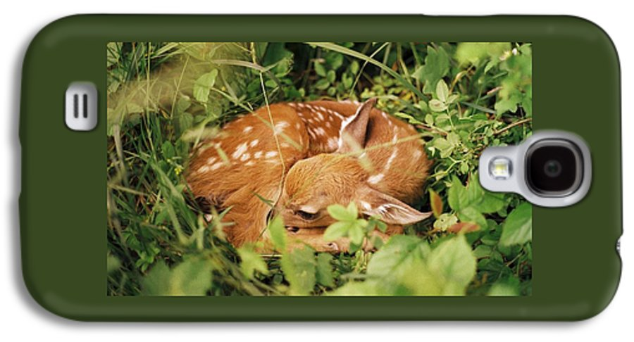 Deer Galaxy S4 Case featuring the photograph 080806-17 by Mike Davis