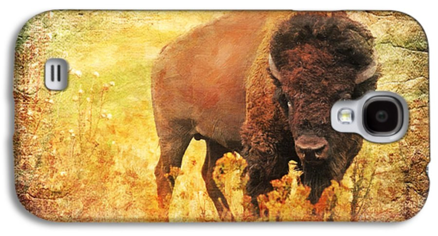 Bison Galaxy S4 Case featuring the digital art All But Forgotten by Lianne Schneider