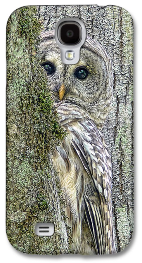 Owl Galaxy S4 Case featuring the photograph Barred Owl Peek A Boo by Jennie Marie Schell