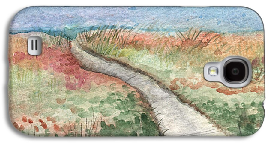 Beach Galaxy S4 Case featuring the painting Beach Path by Linda Woods