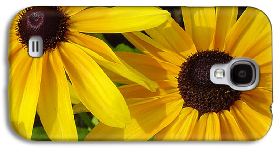 Black Eyed Susan Galaxy S4 Case featuring the photograph Black-eyed Susans Close Up by Suzanne Gaff