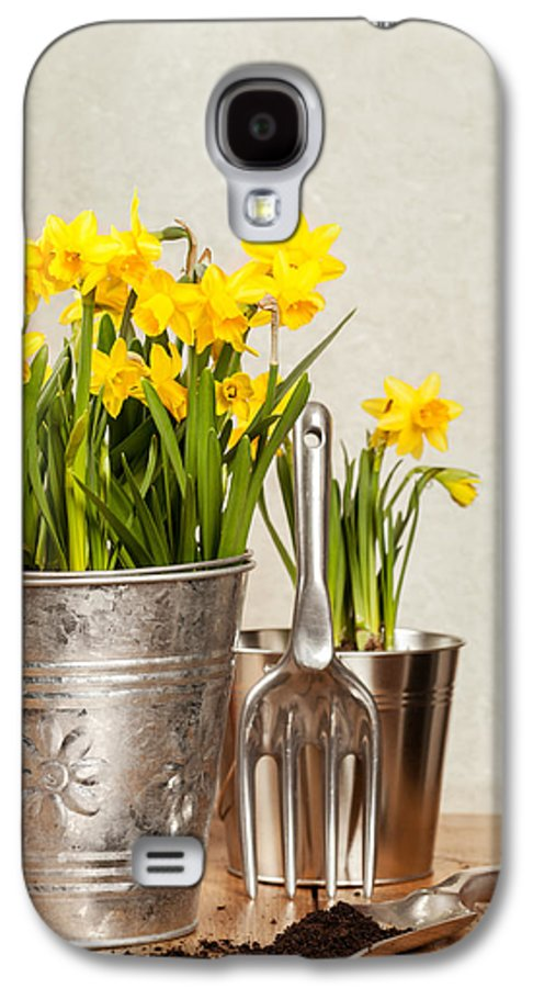 Spring Galaxy S4 Case featuring the photograph Buckets Of Daffodils by Amanda Elwell