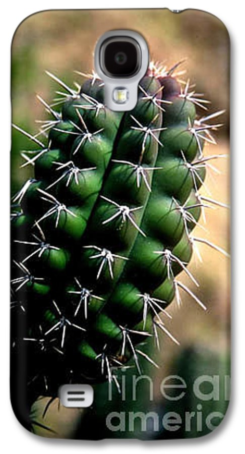 Sahuaro Galaxy S4 Case featuring the photograph Cactus Arm by Kathy McClure