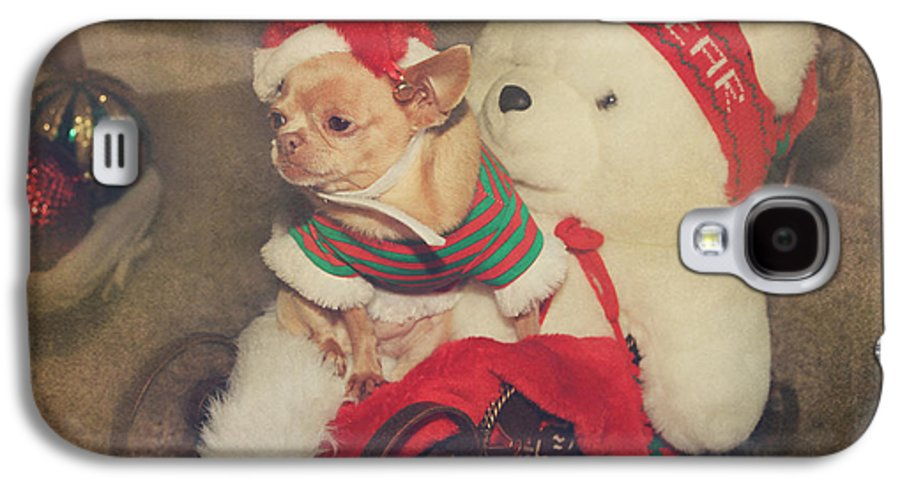 Dog Galaxy S4 Case featuring the photograph Christmas Zoe by Laurie Search