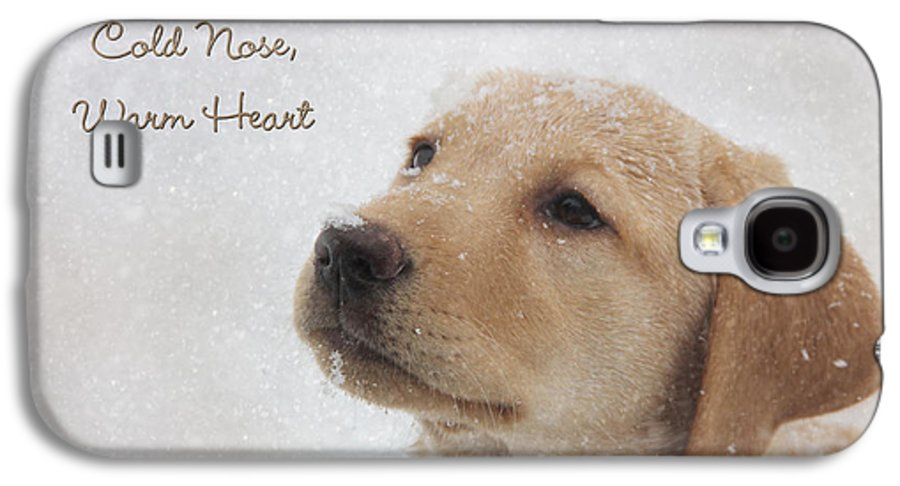 Yellow Lab Galaxy S4 Case featuring the photograph Cold Nose Warm Heart by Lori Deiter