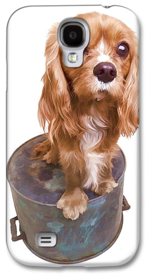 Puppy Galaxy S4 Case featuring the photograph Cute Puppy Card by Edward Fielding
