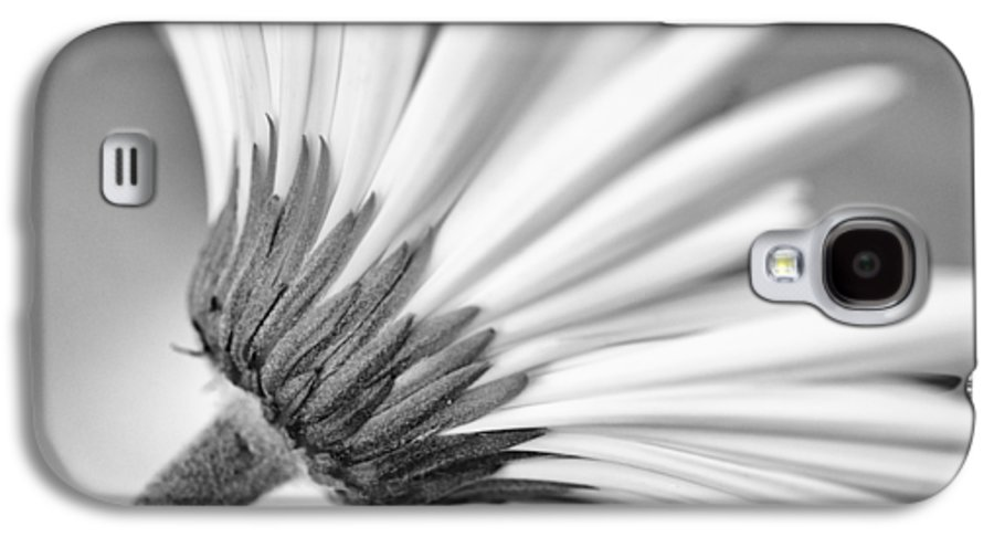 Christi Kraft Galaxy S4 Case featuring the photograph Daisy Noir by Christi Kraft