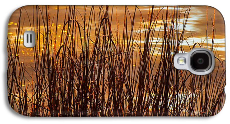 Nature Abstracts Galaxy S4 Case featuring the photograph Dawn's Early Light by Karen Wiles