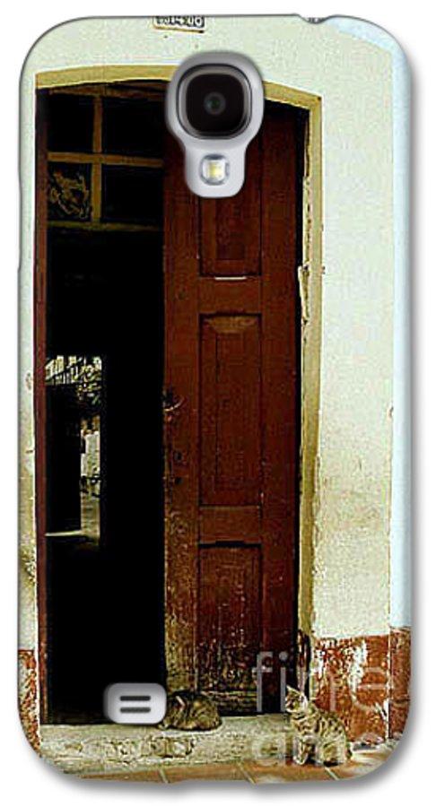 Cats Galaxy S4 Case featuring the photograph Dos Puertas Con Dos Gatos by Kathy McClure