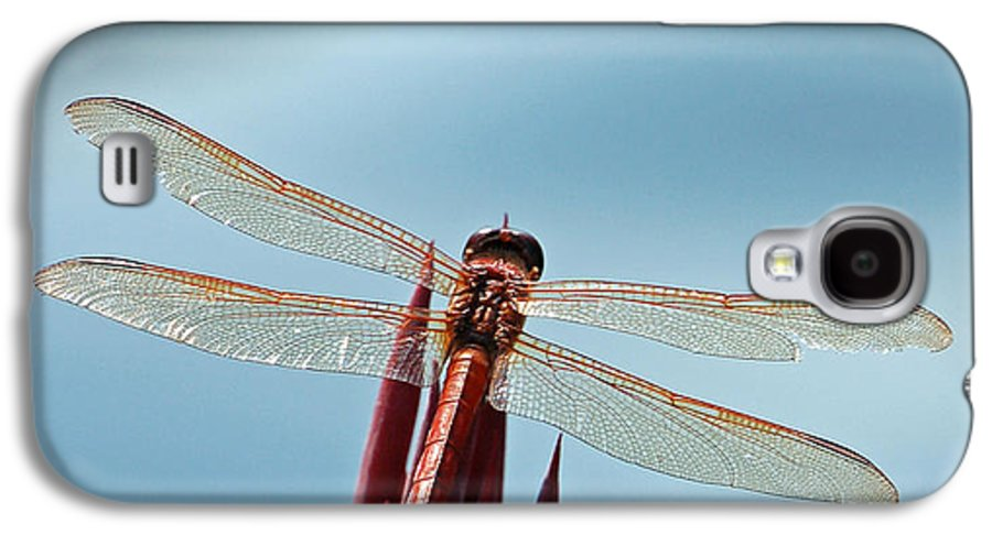Dragonfly Galaxy S4 Case featuring the photograph Dragonfly Days by Suzanne Gaff
