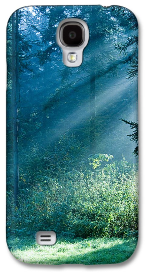 Nature Galaxy S4 Case featuring the photograph Elven Forest by Daniel Csoka