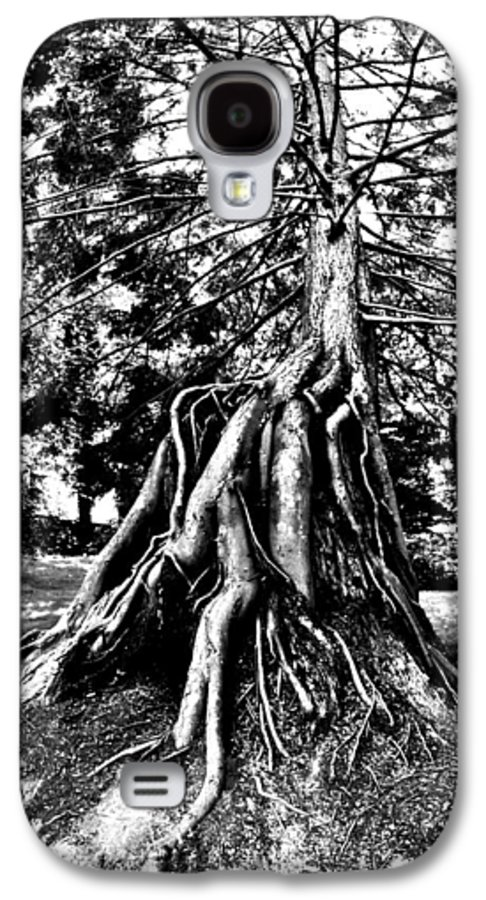 Tree Galaxy S4 Case featuring the photograph Exposed by Benjamin Yeager