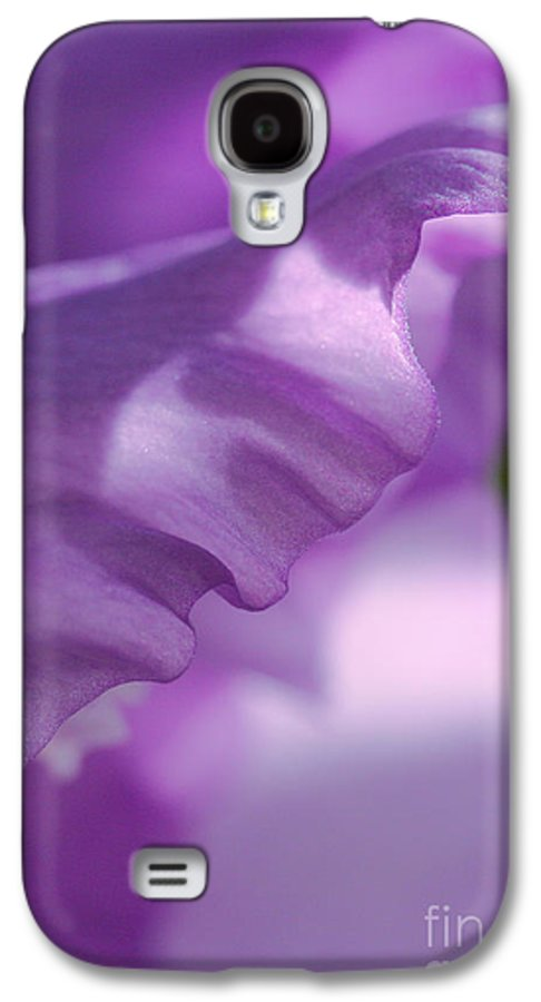 Flower Galaxy S4 Case featuring the photograph Face In A Glad by Steve Augustin