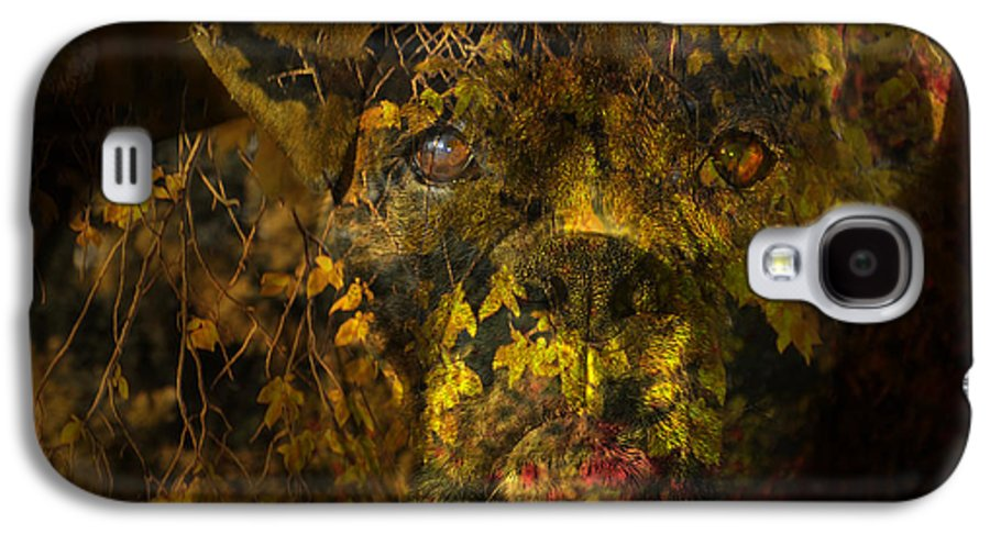 Boxer Dog Galaxy S4 Case featuring the digital art Fall Boxer by Judy Wood