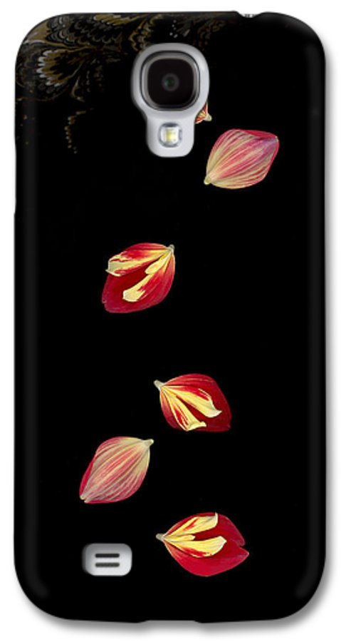 Petal Galaxy S4 Case featuring the photograph Falling by Suzanne Gaff