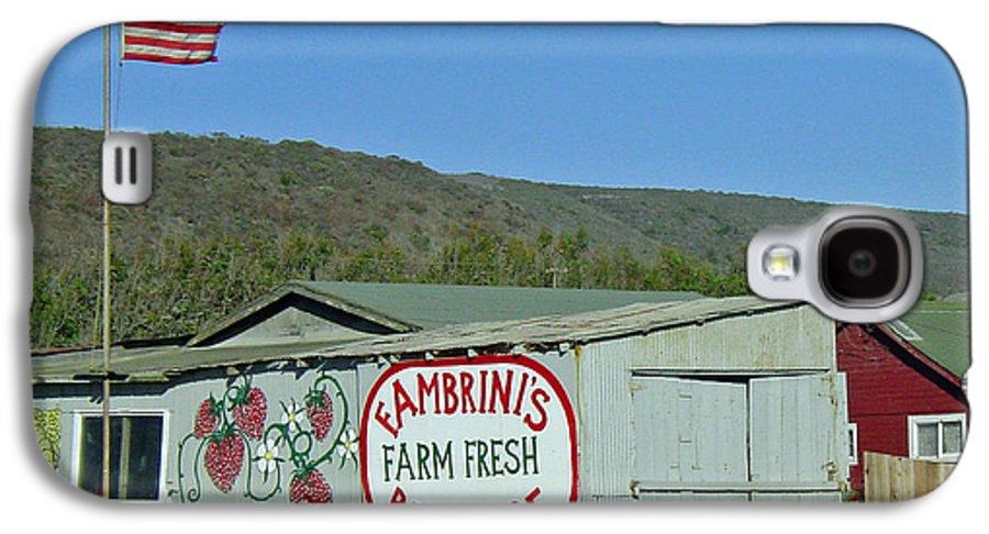 Farm Fresh Produce Galaxy S4 Case featuring the photograph Fambrini's Farm Fresh Produce by Suzanne Gaff