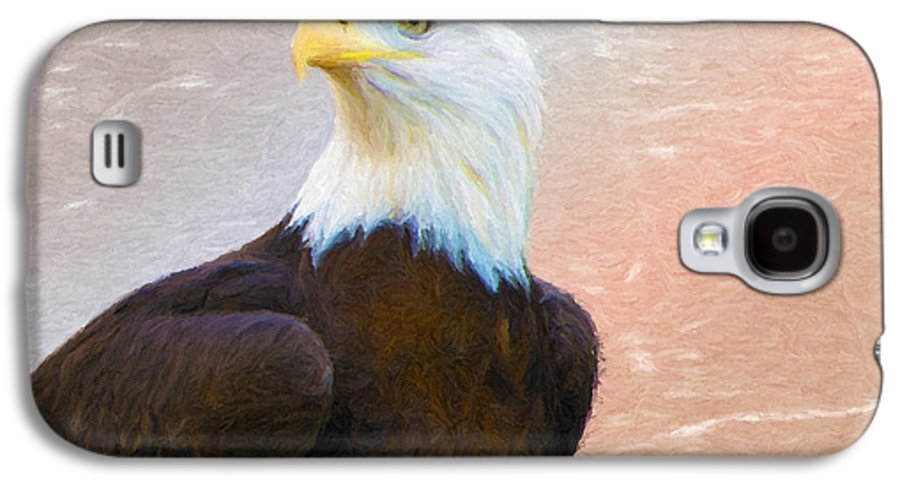 4th Galaxy S4 Case featuring the painting Freedom Flyer by Jeff Kolker