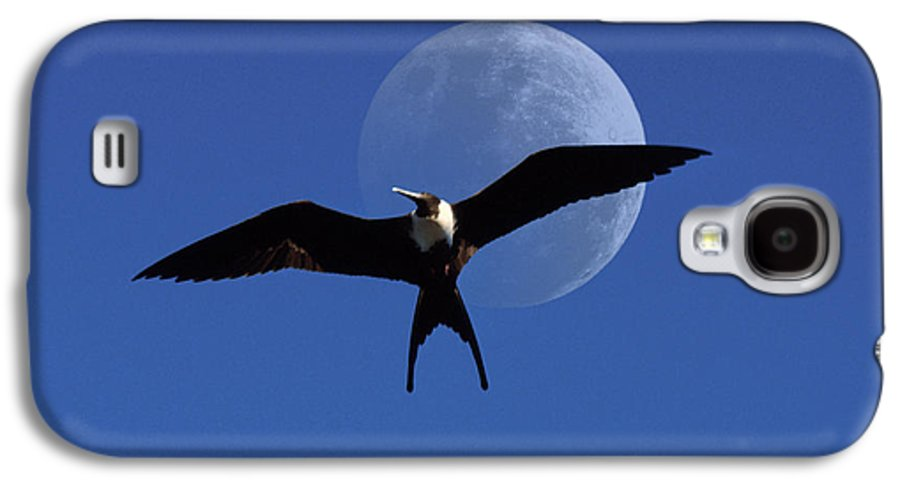 Frigate Galaxy S4 Case featuring the photograph Frigatebird Moon by Jerry McElroy