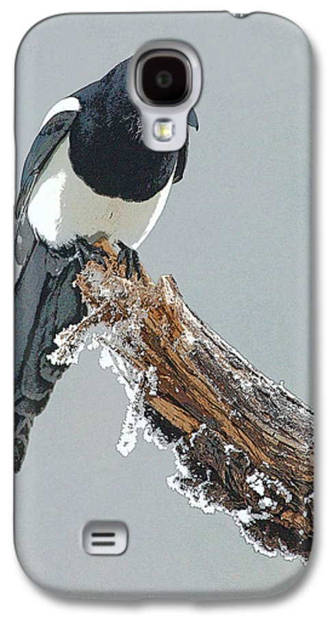 Abstract Galaxy S4 Case featuring the digital art Frosted Magpie- Abstract by Tim Grams