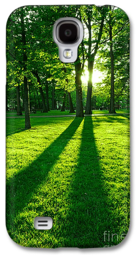 Park Galaxy S4 Case featuring the photograph Green Park by Elena Elisseeva