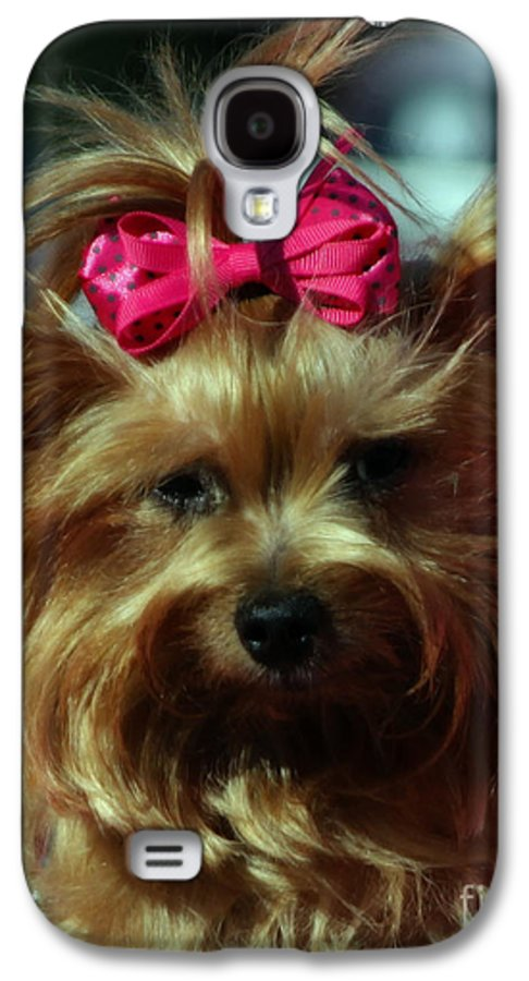 Dogs Galaxy S4 Case featuring the photograph Her Pinkness by Steven Digman
