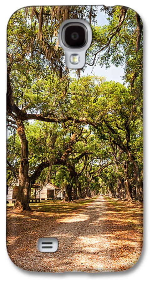 Evergreen Plantation Galaxy S4 Case featuring the photograph Historic Lane by Steve Harrington