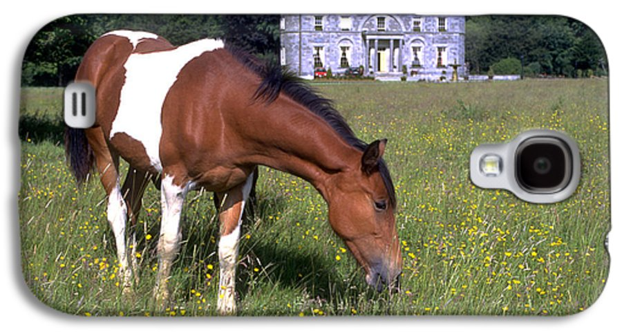 Horse Galaxy S4 Case featuring the photograph Horse Grazes Near St. Clerans by Carl Purcell