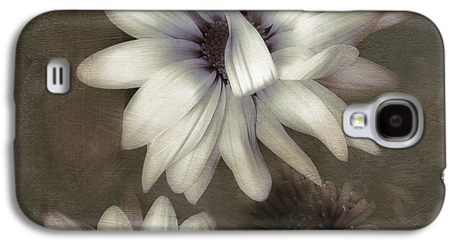 Daisies Galaxy S4 Case featuring the photograph Lazy Daisies by Bonnie Bruno