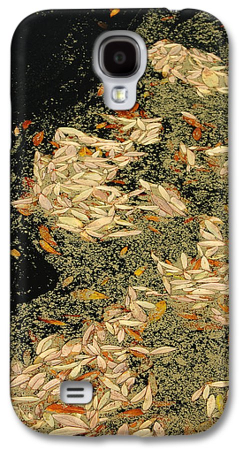 Klimt Galaxy S4 Case featuring the photograph Leaf Abstract Ode To Klimt by Suzanne Gaff