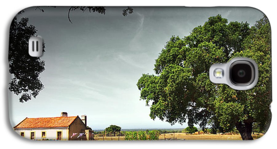 Agriculture Galaxy S4 Case featuring the photograph Little Rural House by Carlos Caetano