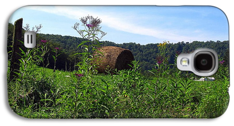 Adaline Galaxy S4 Case featuring the photograph Lone Hay Round by Willy Nelson