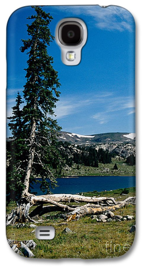 Mountains Galaxy S4 Case featuring the photograph Lone Tree At Pass by Kathy McClure