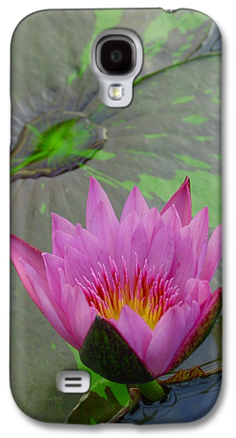 Lotus Galaxy S4 Case featuring the photograph Lotus Blossom by Suzanne Gaff