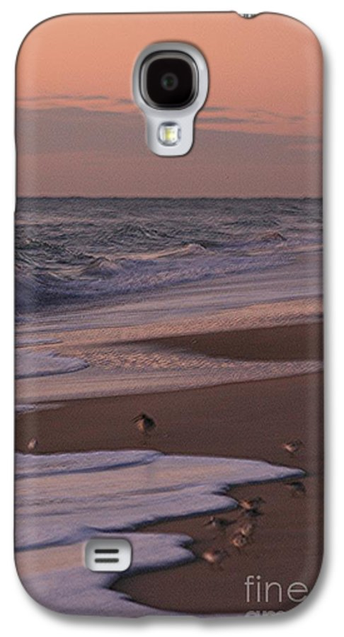 Beach Galaxy S4 Case featuring the photograph Morning Birds At The Beach by Nadine Rippelmeyer