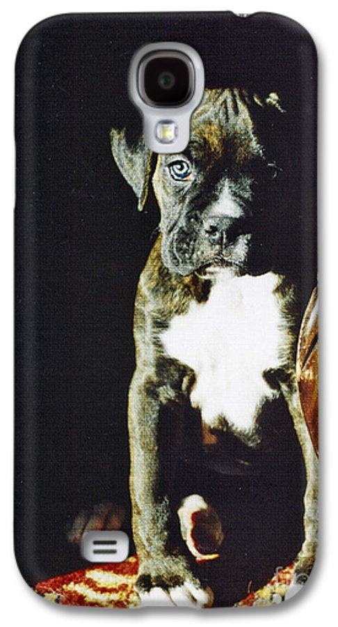 Boxer Dog Galaxy S4 Case featuring the digital art New To The World by Judy Wood