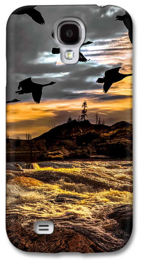 Canadian Geese Galaxy S4 Case featuring the photograph Night Flight by Bob Orsillo