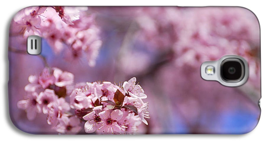 Cherry Galaxy S4 Case featuring the photograph Pink by Guido Montanes Castillo