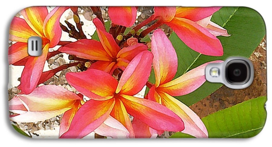 Hawaii Iphone Cases Galaxy S4 Case featuring the photograph Plantation Plumeria by James Temple