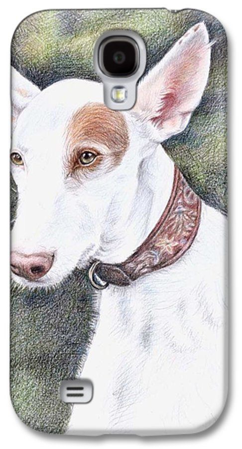 Dog Galaxy S4 Case featuring the drawing Podenco Ibicenco by Nicole Zeug
