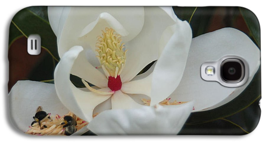 Flower Galaxy S4 Case featuring the photograph Pollen Party by Suzanne Gaff