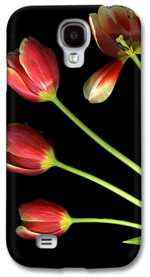 Scanography Galaxy S4 Case featuring the photograph Pot Of Tulips by Christian Slanec