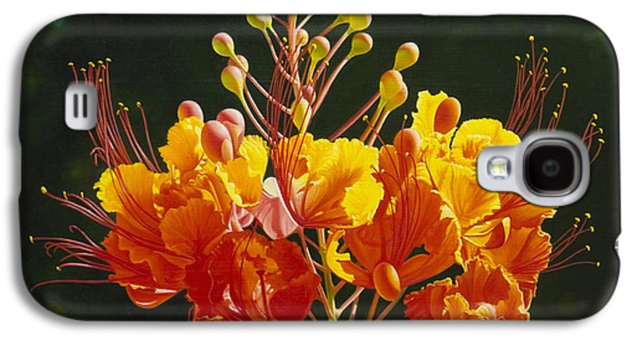 Floral Galaxy S4 Case featuring the painting Pride Of Barbados by Gary Hernandez