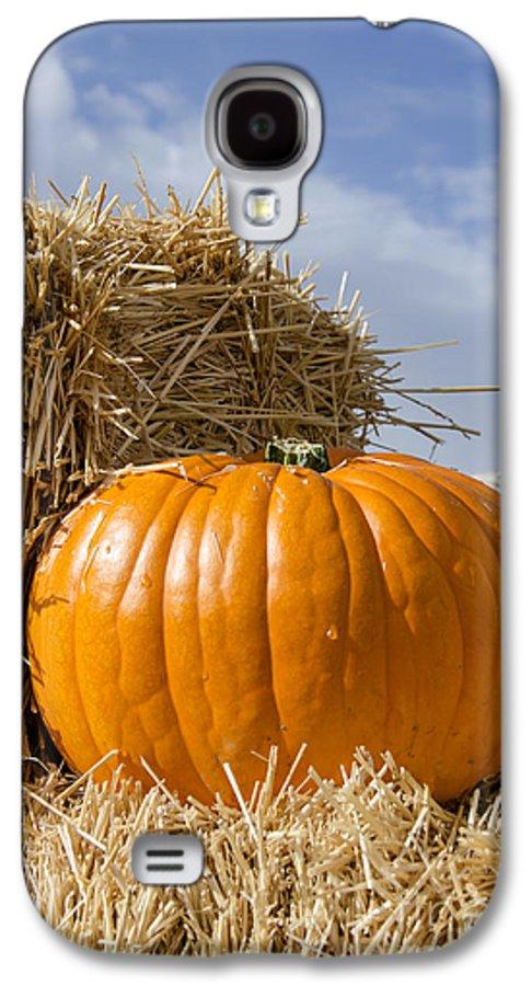 Pumpkin Galaxy S4 Case featuring the photograph Pumpkin by Yoshiko Wootten