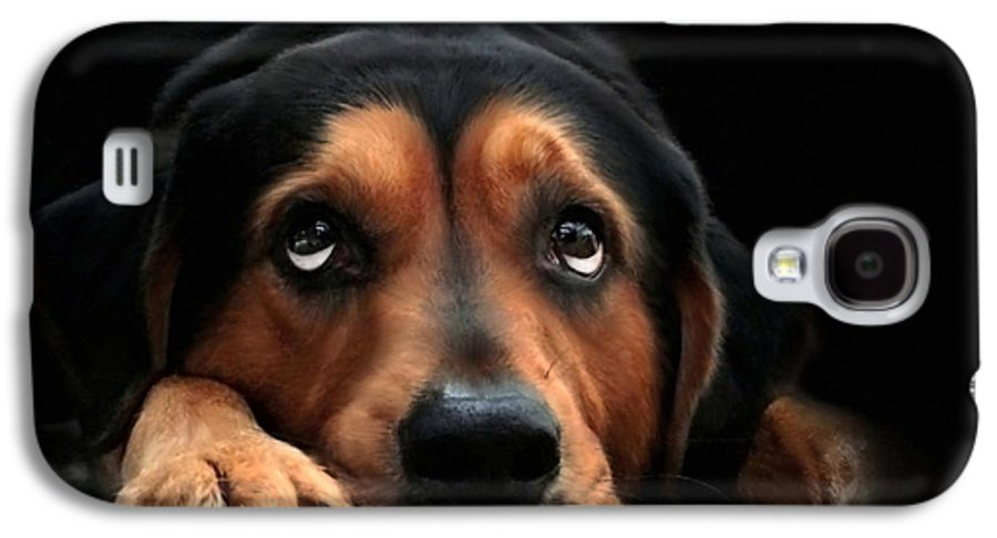 Puppy Dog Galaxy S4 Case featuring the mixed media Puppy Dog Eyes by Christina Rollo