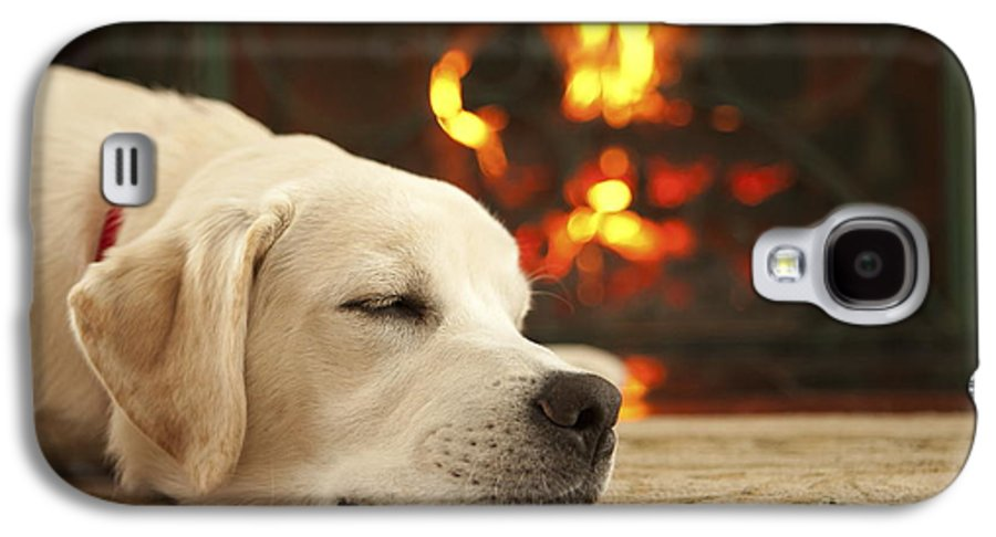 Puppy Galaxy S4 Case featuring the photograph Puppy Sleeping By The Fireplace by Diane Diederich